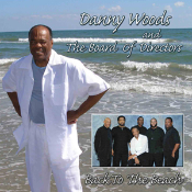 Back to the Beach by Danny Woods and the Board of Directors